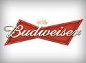 Budweiser Importer & Distributor Dubai
